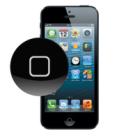iPhone-5-zamena-knopki-home-228x228